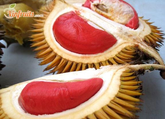 Sầu riêng ruột đỏ là loại trái thơm ngon - Vinfruits