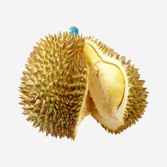 Sau rieng Thai Lan - vinfruits.com 2
