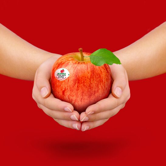 Tao Royal Gala NZ - vinfruits.com 4