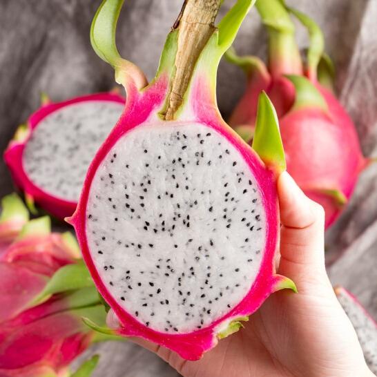 Thanh long ruot trắng Bình Thuận - vinfruits.com 5