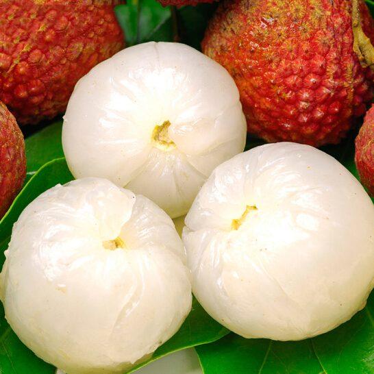 Vải Thiều - vinfruits.com 3