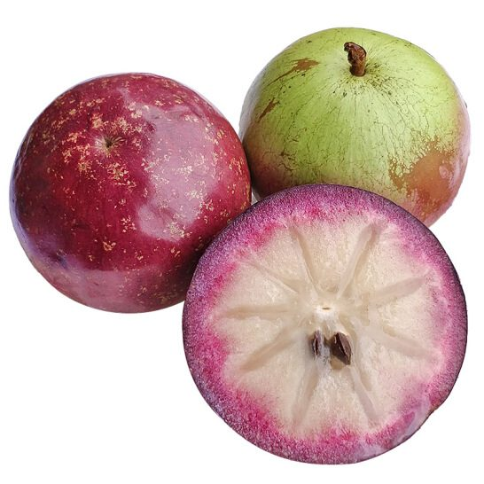Vu sua Lo Ren - vinfruits.com 1