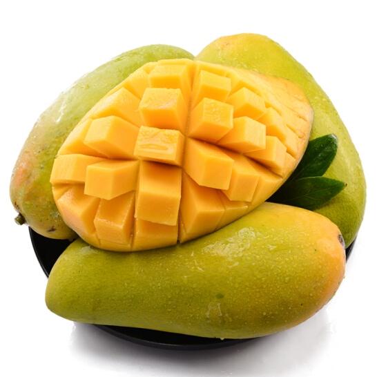 Xoai cat Hoa Loc - vinfruits.com 1