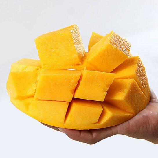 Xoai cat Hoa Loc - vinfruits.com 3
