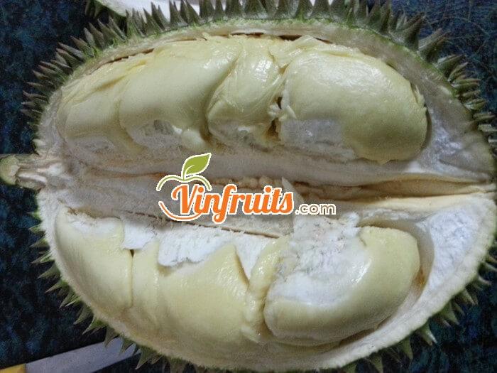 Sầu riêng Gò Dầu - Tây Ninh - Vinfruits