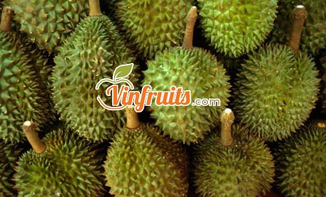 Hãy liên hệ Vinfruits để mua Sầu riêng Cái Mơn chính hiệu - Envyfruits