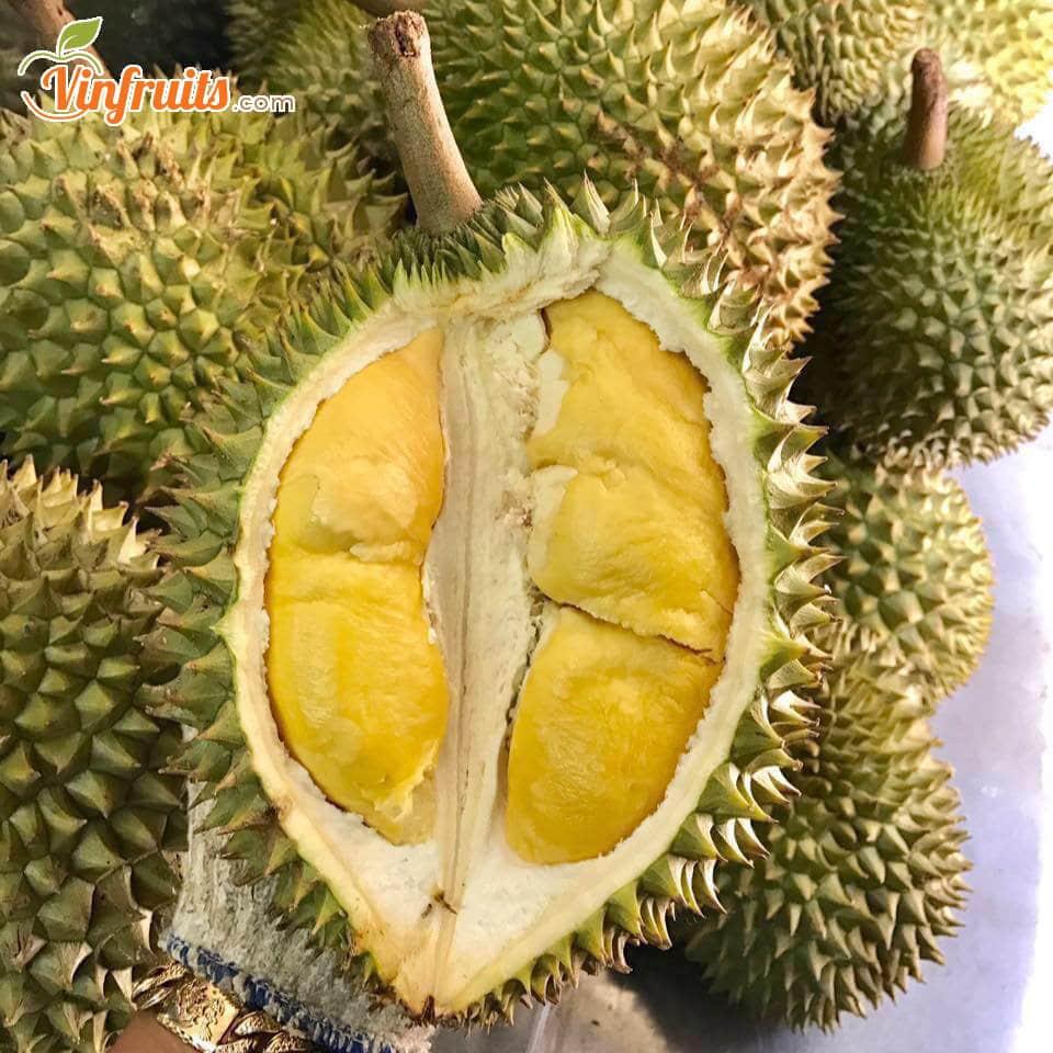"""Sầu riêng Cái Mơn """"cơm vàng hạt lép"""" - Vinfruits"""