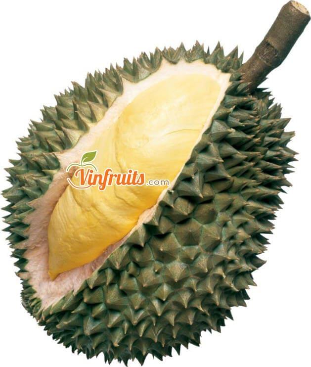 Sầu riêng Monthong Thái - Vinfruits