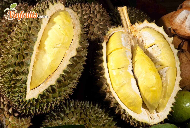 Sầu riêng Monthong (Dona) cơm vàng, hạt lép, vỏ mỏng - Vinfruits