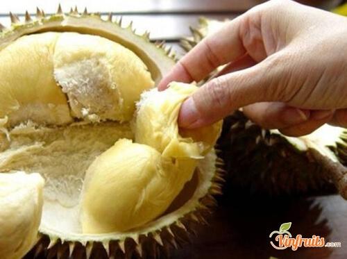 Sầu riêng Đaklak trái nhỏ - Vinfruits