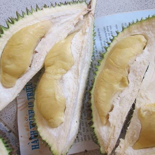 Sầu riêng khổ qua da xanh - Đaklak - Vinfruits