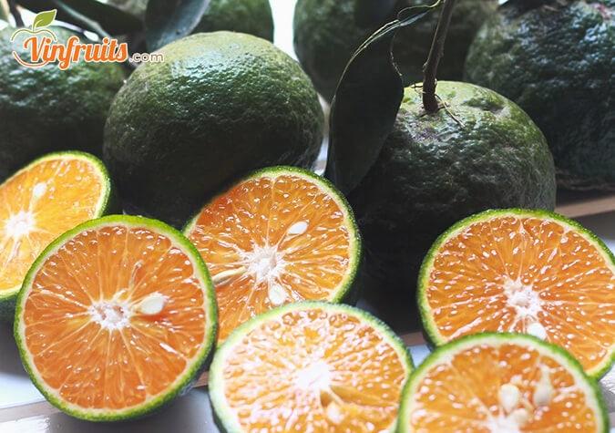 Cam sành vỏ mỏng, ruột vàng, mọng nước - Vinfruits