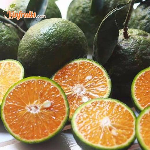 Cam sanh mien tay - Vinfruits.com 1