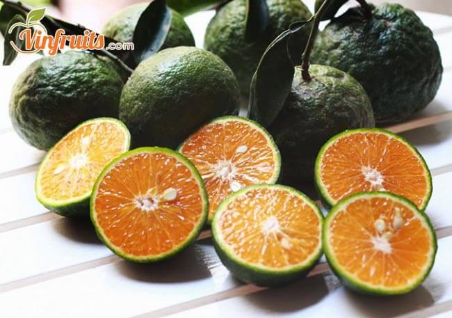 Cam Bố Hạ vỏ mỏng, tép vàng, mọng nước - Vinfruits