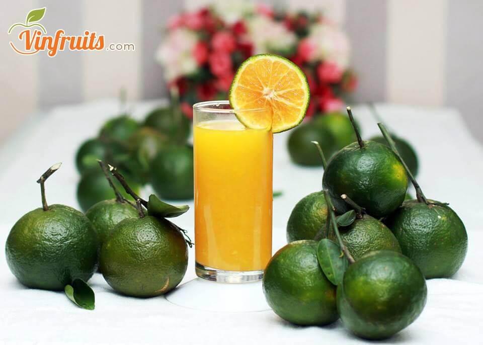 Cam sành Bến Tre thơm ngon, ngọt nước - Vinfruits