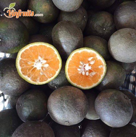 Cam sành đen hữu cơ vỏ dày, ruột đỏ - Vinfruits
