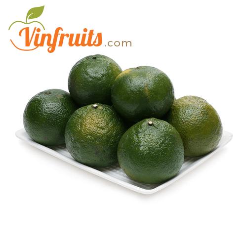 Cam sành Bắc Tân Uyên tại Vinfruits - Vinfruits