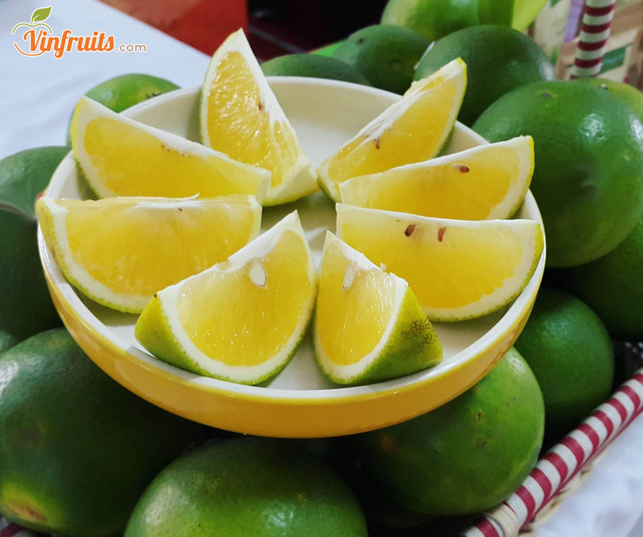 Cam Vinh đặc sản Nghệ An - Vinfruits
