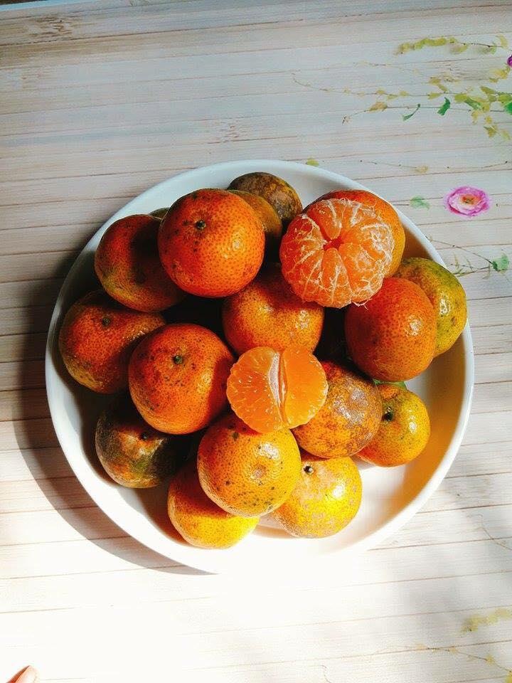 Quýt đường Thái là giống quýt thuần ngọt, không có vị chua - Vinfruits