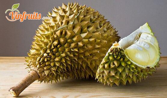 Ủ theo phương pháp của các nhà vườn giúp sầu riêng chín đều, thơm ngon - Vinfruits