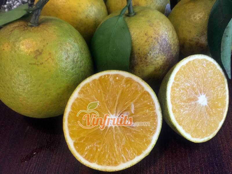 Cam xoàn rất ngon và tốt cho sức khỏe - Vinfruits