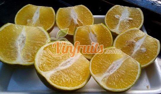 Càm xoàn có vị ngọt rất đậm - Vinfruits