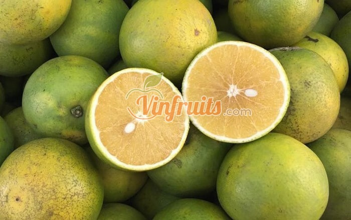 Cam xoàn Lai Vung - Vinfruits