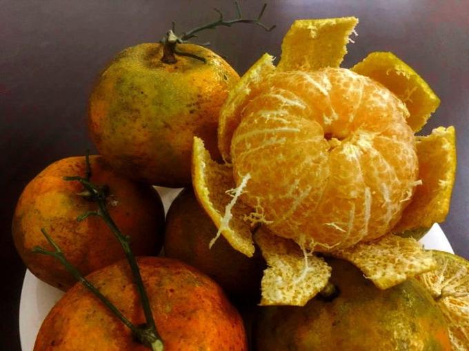 Quýt hôi Bắc Cạn - Vinfruits