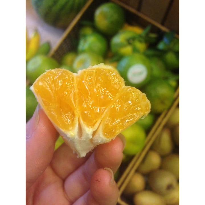 Quýt Mường Khương mọng nước, thơm ngon - Vinfruits