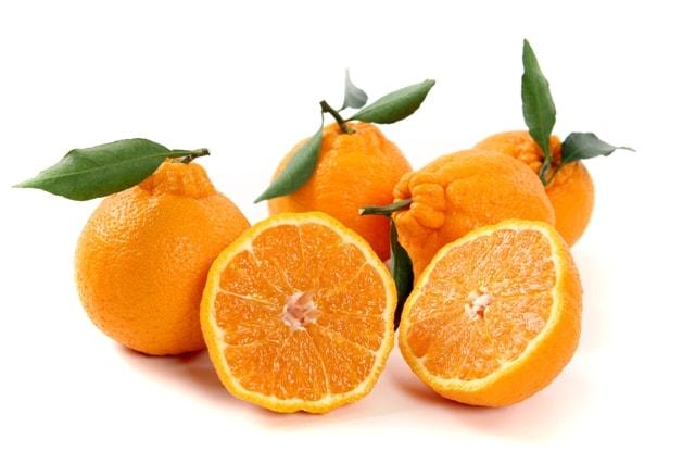 Quýt Jeju có vẻ ngoài rất đẹp và hấp dẫn - Vinfruits